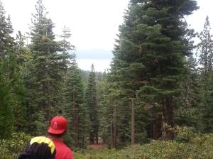 Tahoe Vista 11
