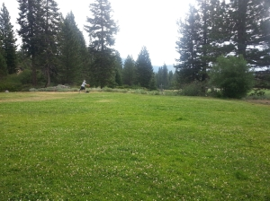 Tahoe Vista 12